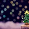 2017年クリスマスプレゼントには上質な鹿革素材の手袋に注目!